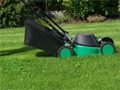 Keep grass clippings in your yard when mowing