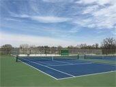 Participate in the senior tennis league