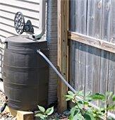 Take Advantage of Rain barrel Reimbursement Program