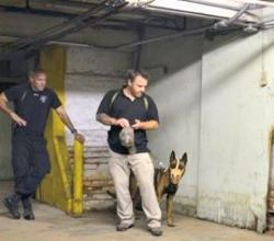 K9 and handler